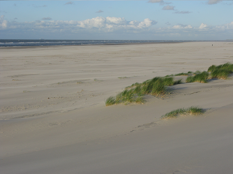 Strand_Osten